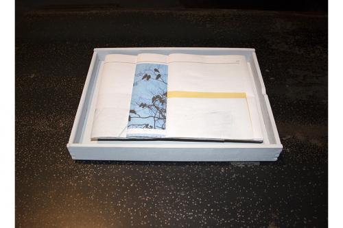 Birds 2014Balsa, paper (0.03x0.16x0.2m)